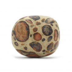 Leopardite (Conglomérat) 2,5 à 3 cm, 15 à 20 g