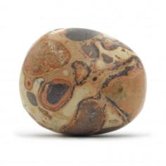 Leopardite (Conglomérat) 3 à 3,5 cm, 20 à 25 g