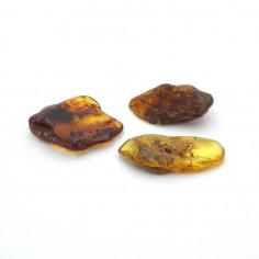 Ambre naturelle lot de 5 g pièce unique
